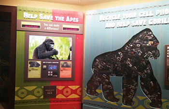 Donation Kiosk - Houston Zoo, Texas